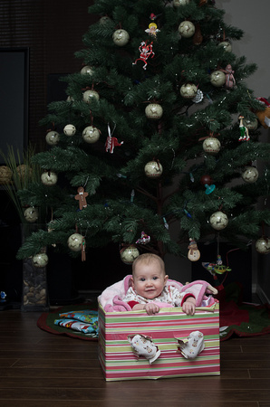 Baby's first Christmas photography session